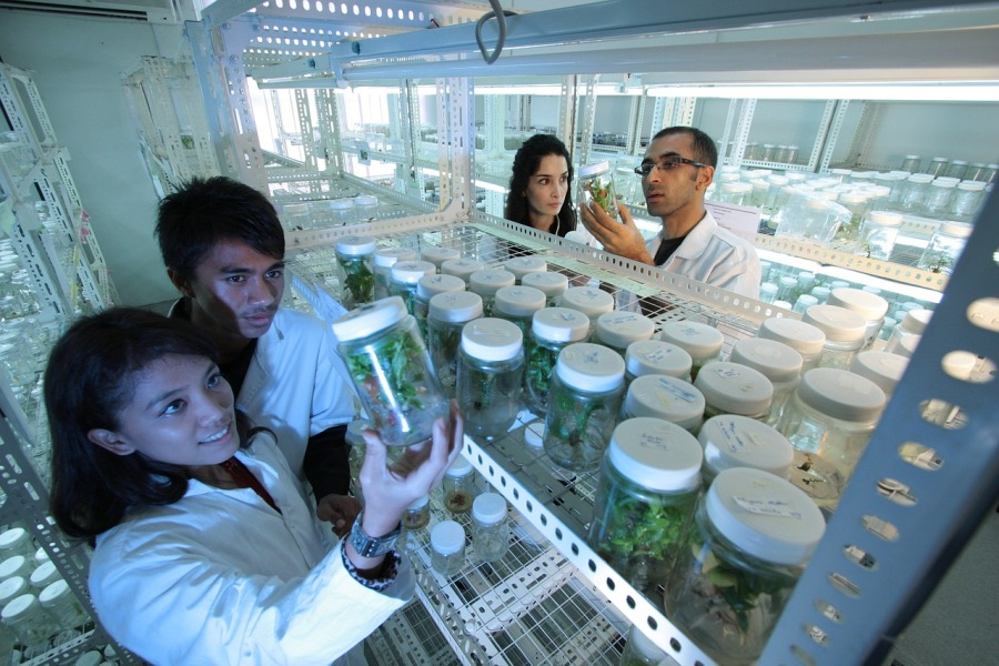 Bengaluru emerges as India's biotech startup capital Study